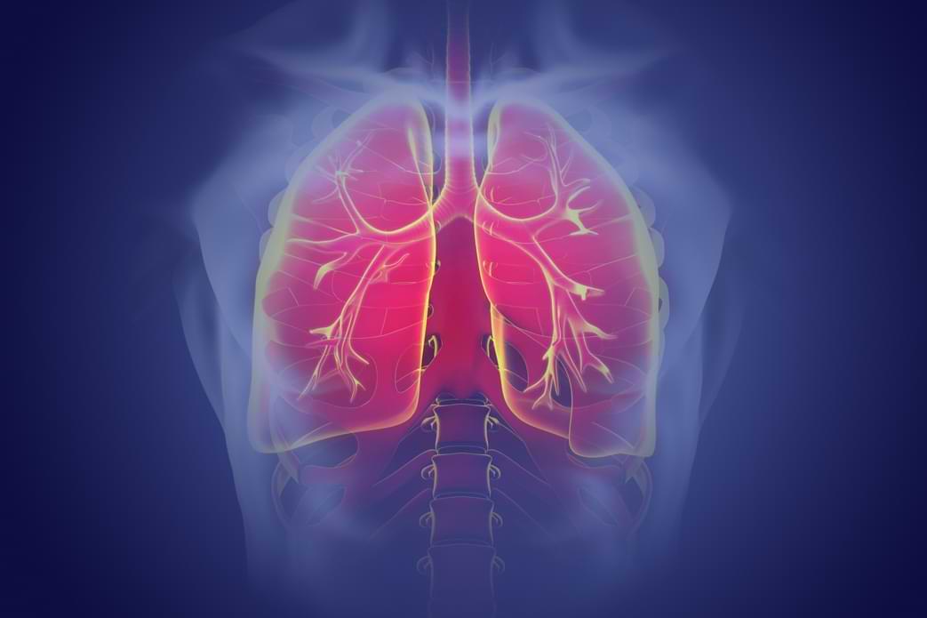 Lapkričio 12 d. – Pasaulinė plaučių uždegimo diena